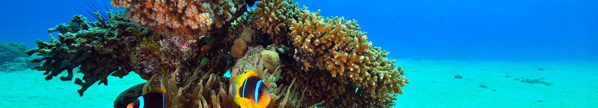 Underwater Acoustics Center